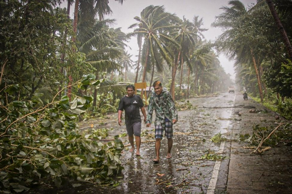 Two people walk along a road past uprooted trees