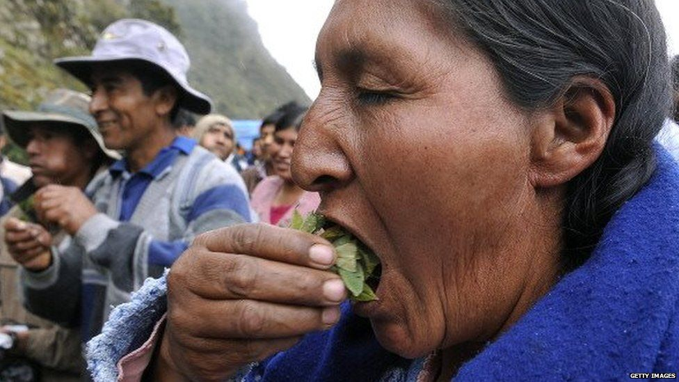 An Aymara woman chews coca leaves on a road near the town of Santa Barbara on 18 October, 2010.