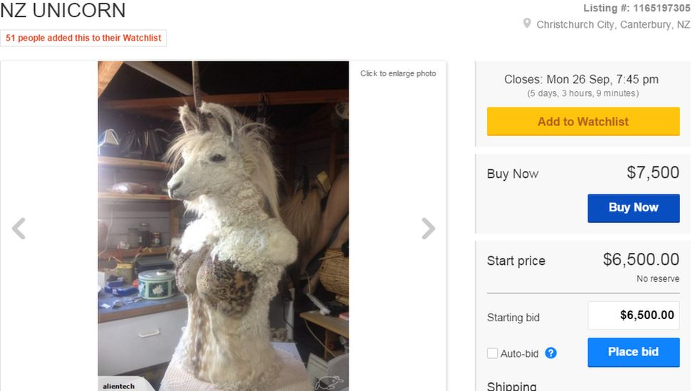 Picture of the Unicorn for sale on TradeMe