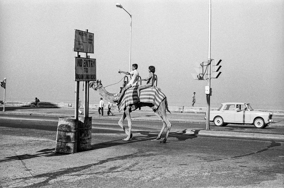 A camel ride on Mumbai's Marine Drive in 1977