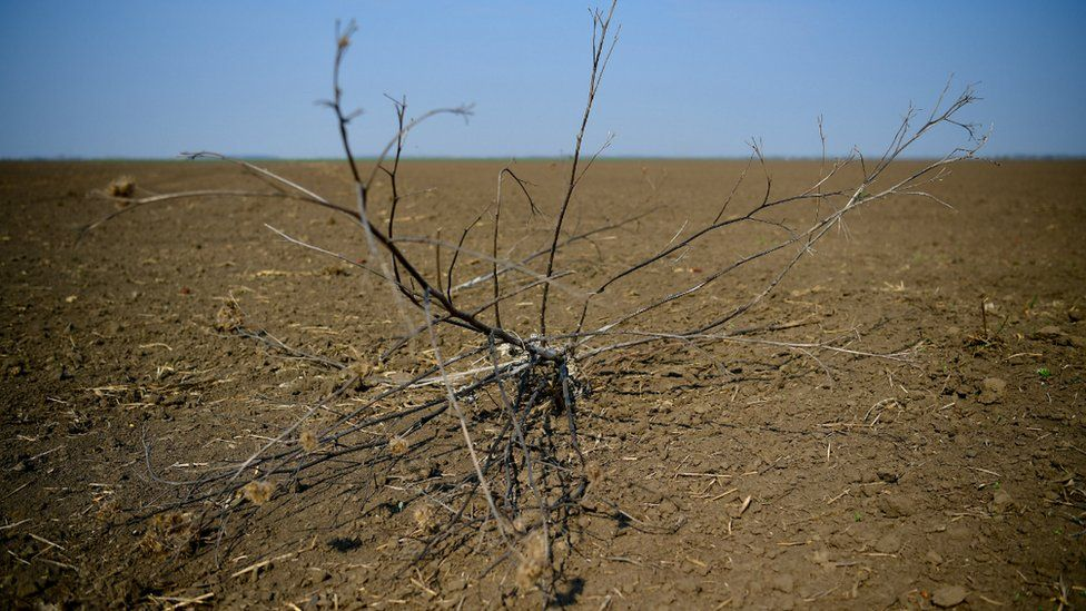 Hungary drought