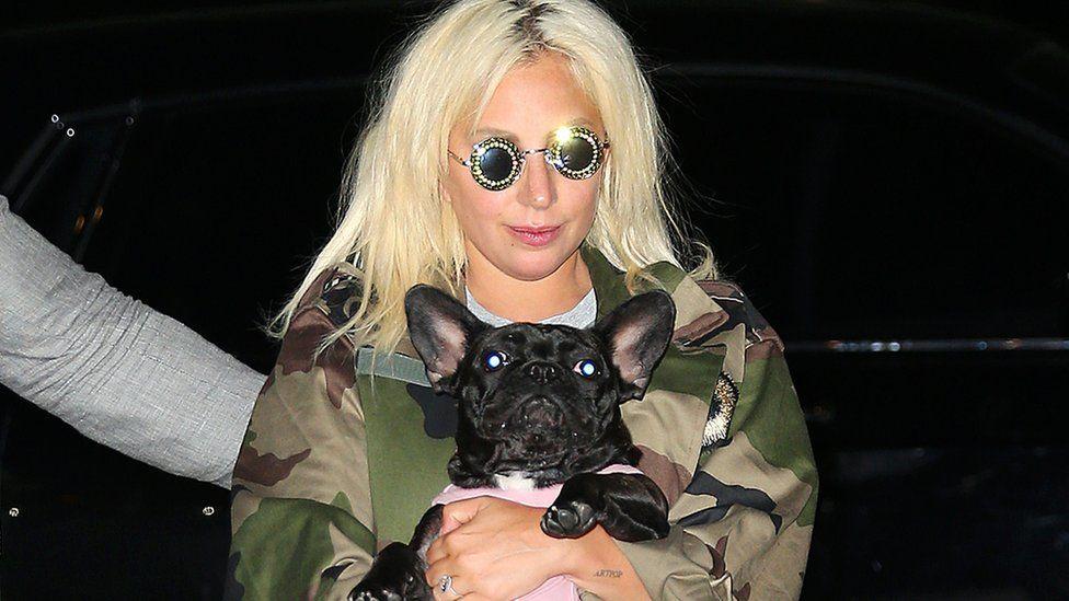 Lady Gaga with a dog. File photo
