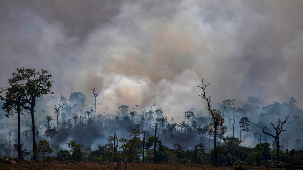 Smokes rises from forest fires in Altamira, Para state, Brazil, on August 27, 2019