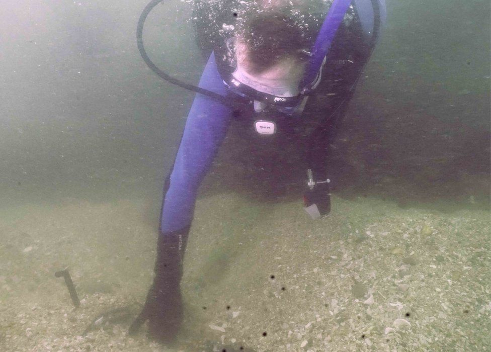 A diver searching underwater