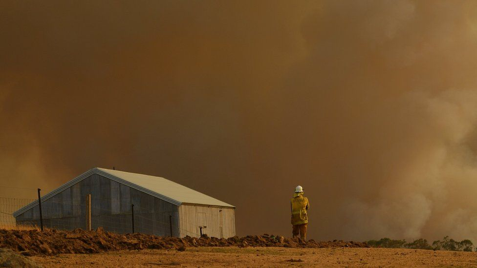 A Rural Fire Service firefighter looks at smoke in New South Wales in January 2020.