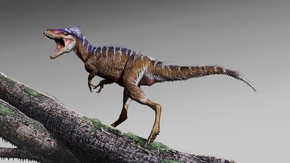 Image result for 66 млн лет назад астероид уничтожил динозавров. А клопы выжили
