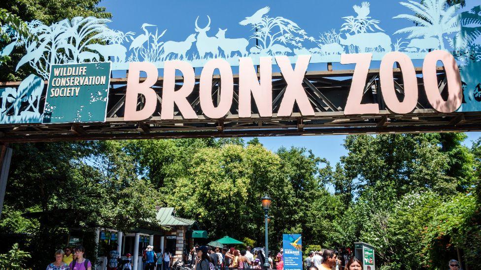 L'entrée du zoo du Bronx photographiée en 2016