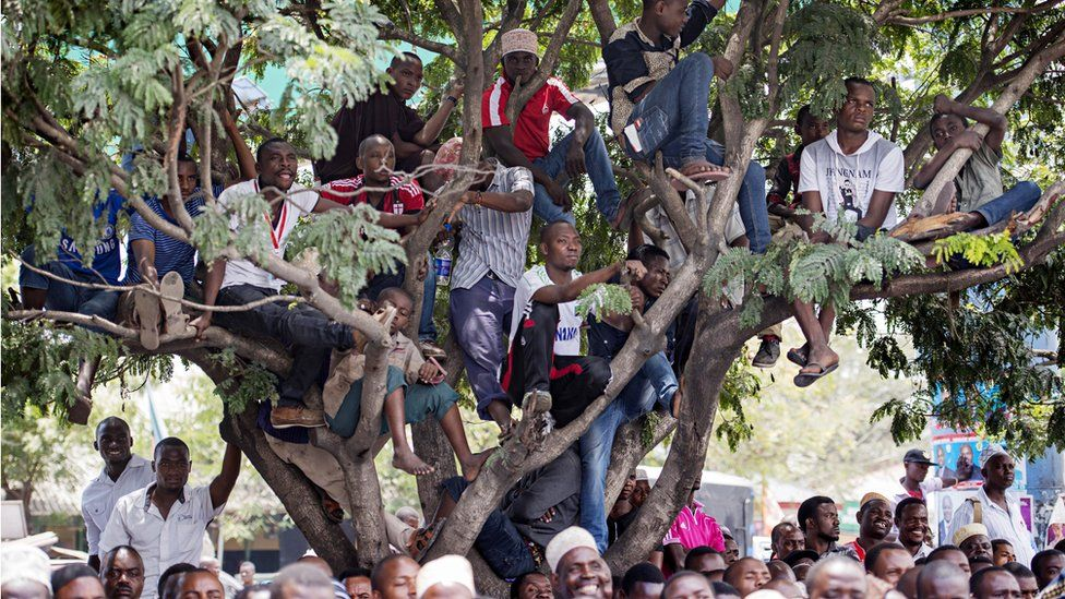 People in a tree during an election rally in Tanzania
