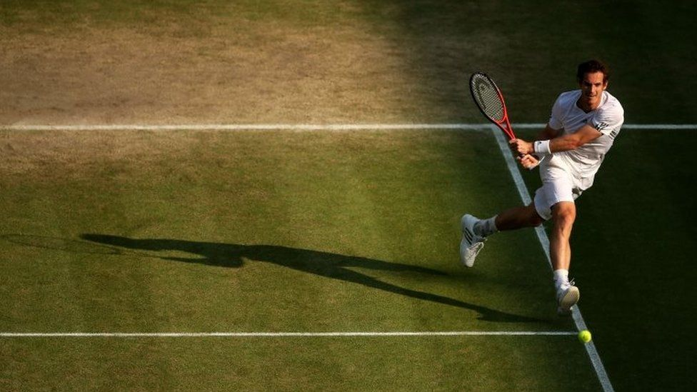 Andrew Murray at Wimbledon
