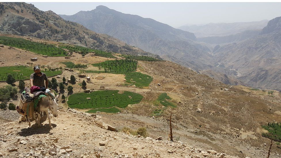 Patches of fertile ground have been cleared from the rocky ground in Dehibolo village