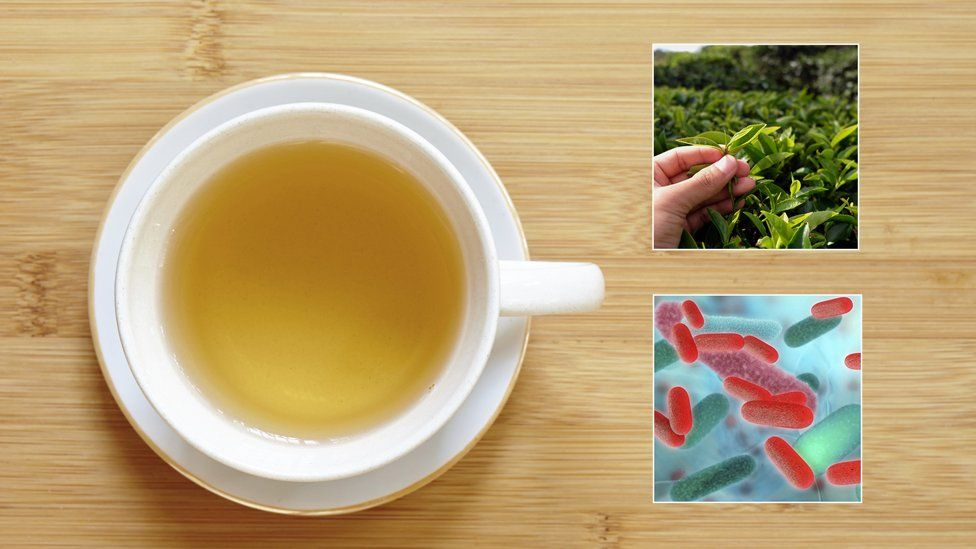a tea cup, tea leaves and a C. Diff bacteria cell