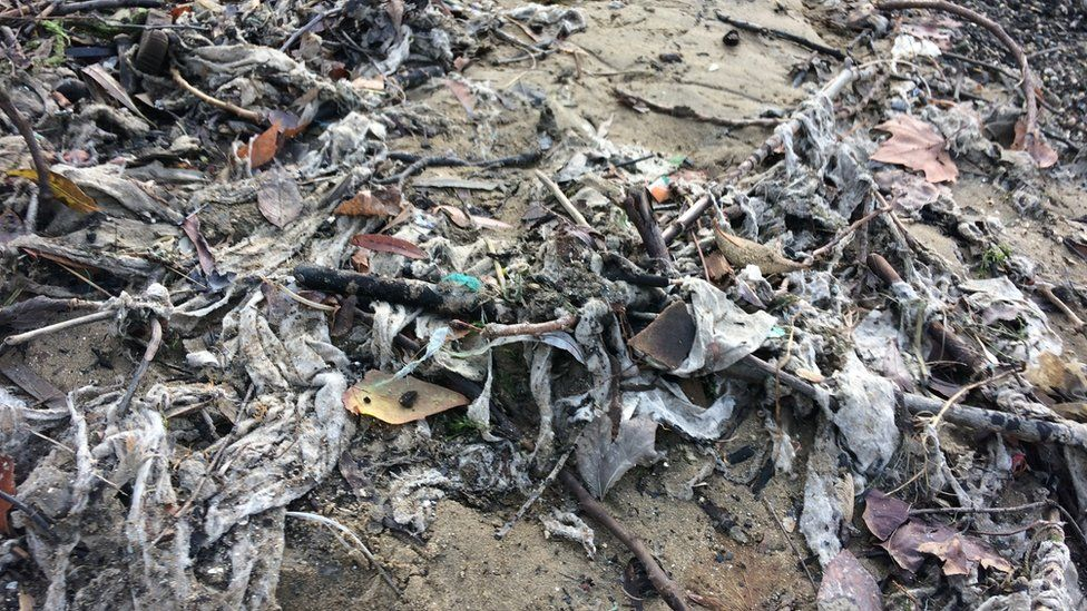 Wet wipes on the riverbed of the Thames at low tide