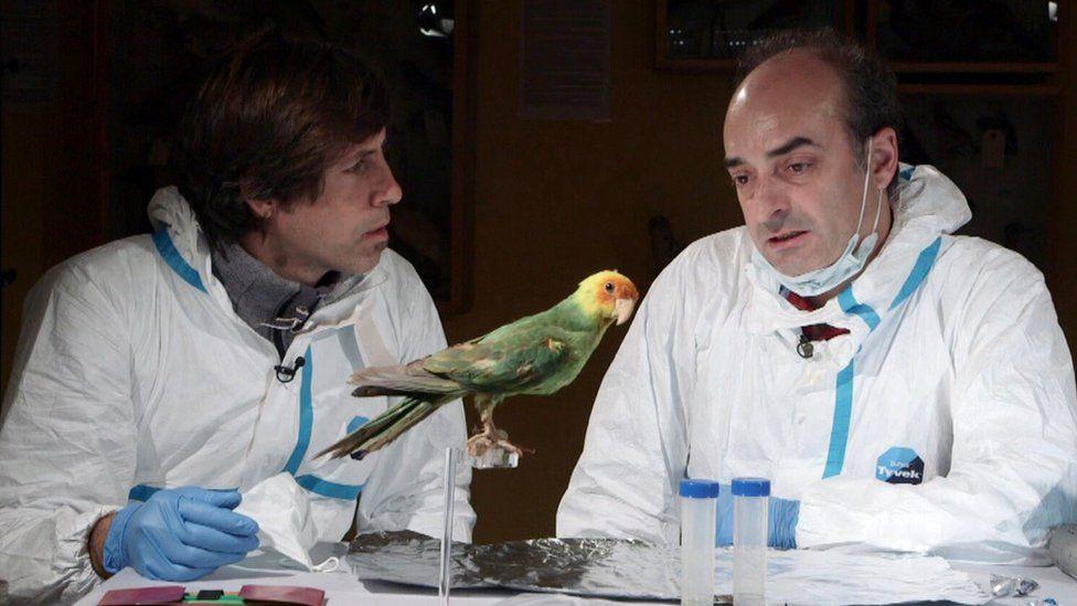 Pere Renom and Carles Lalueza-Fox