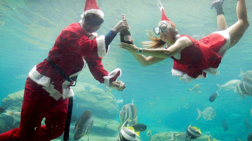 Two workers dressed as Santa Claus swim in a fish tank during a show at a marine theme park in Durban, South Africa.