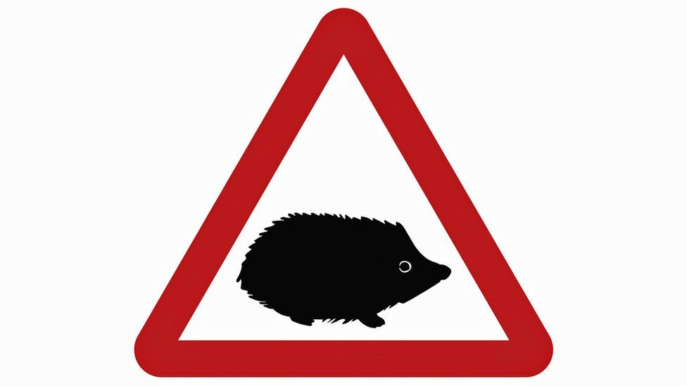 New road sign featuring hedgehog