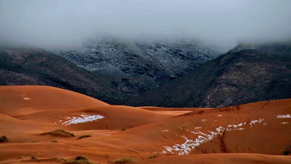 Paisaje nevado del desierto del Sahara. (Foto: gentileza Hamouda Ben jerad)