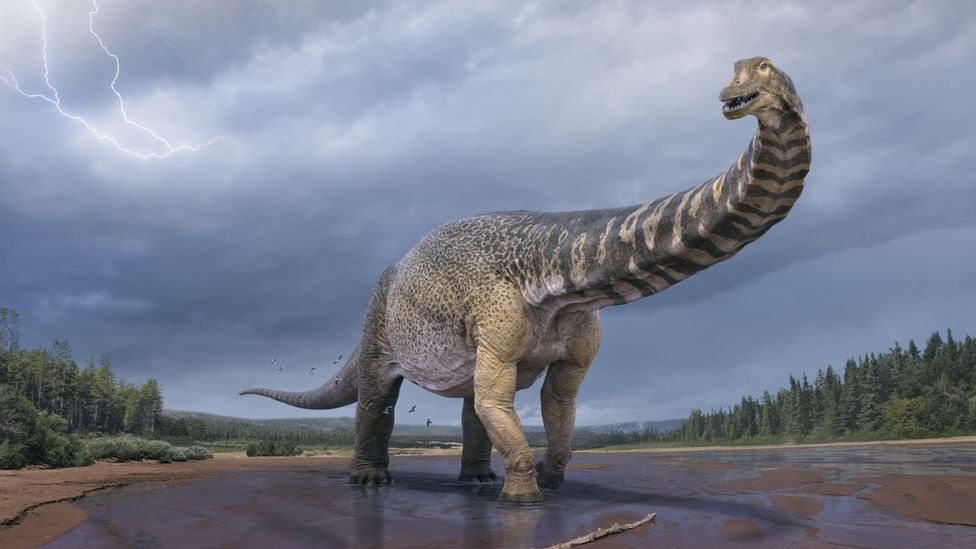 A computer rendering of the Australotitan cooperensis in the Australian landscape 90 millions years ago