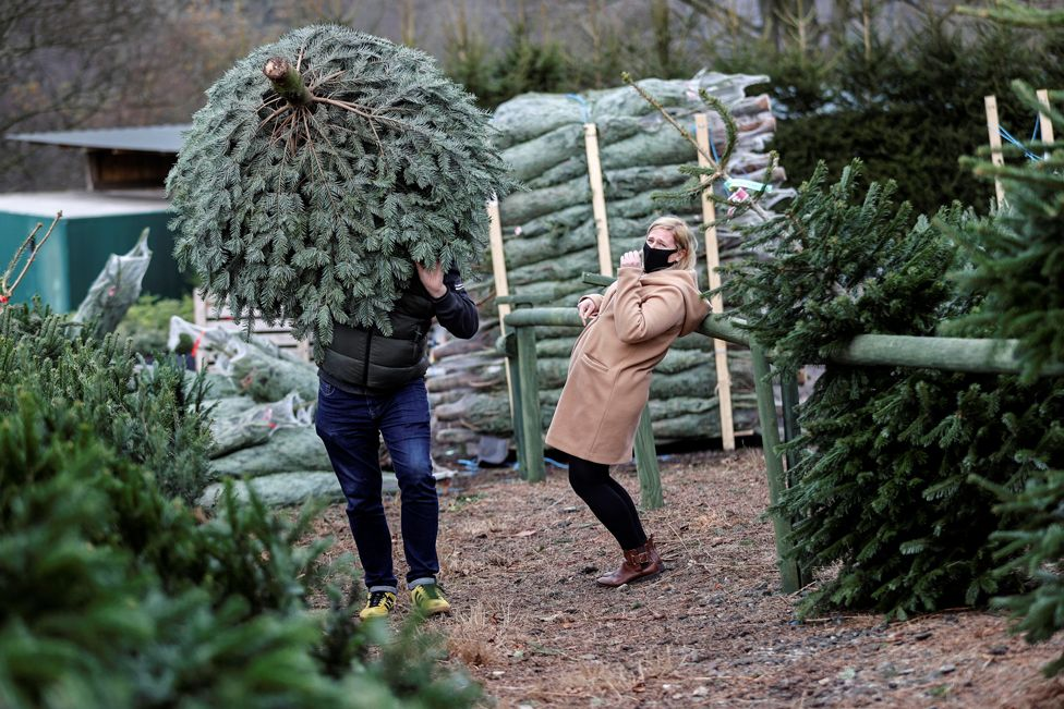 A woman reacts as a person carries a tree on their shoulder