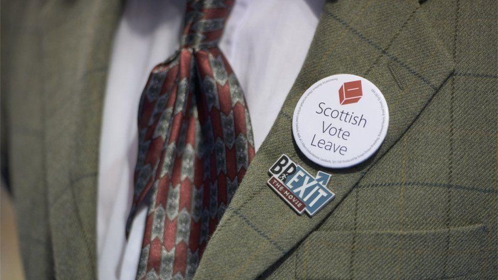 scottish vote leave badge