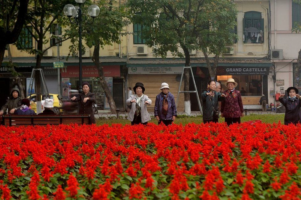 Elderly women exercising in front of bright red flowers