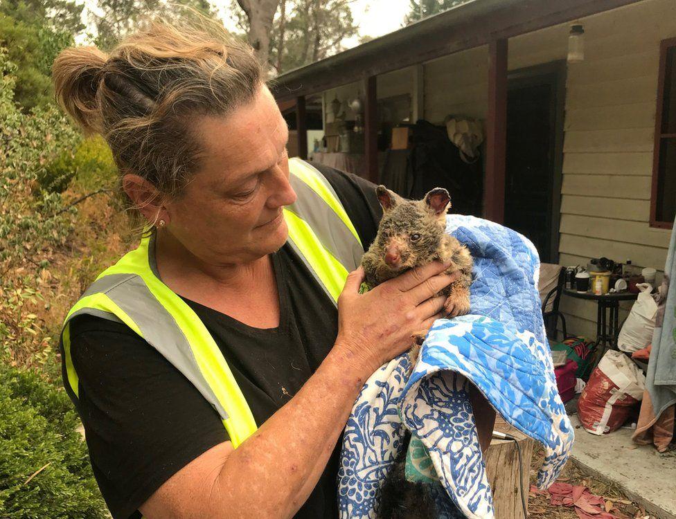 Трейсі Берджесс, волонтер WIRES тримає дуже обгорілого опосума, врятованого від пожеж біля Блакитних гір Австралії