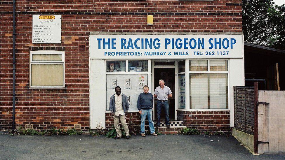 A racing pigeon shop