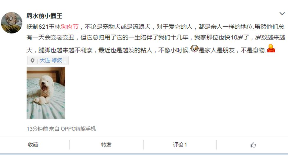 My dog is almost ten years old and is like my family, writes this Weibo user