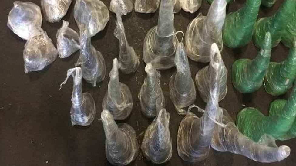 Rhino horns in plastic