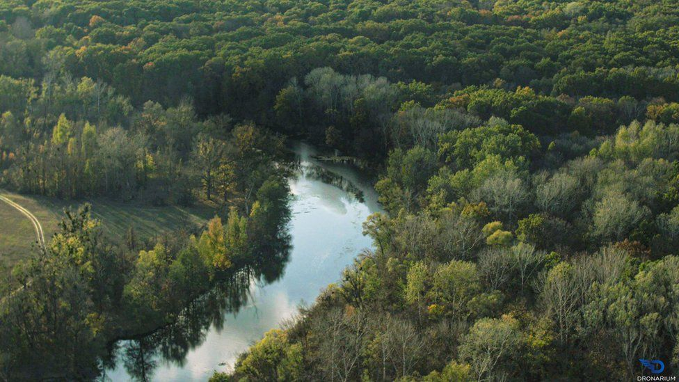 A river snaking through a forest in Ukraine