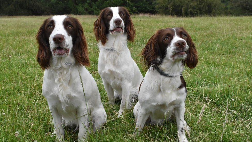 Holly, far right, and her two siblings