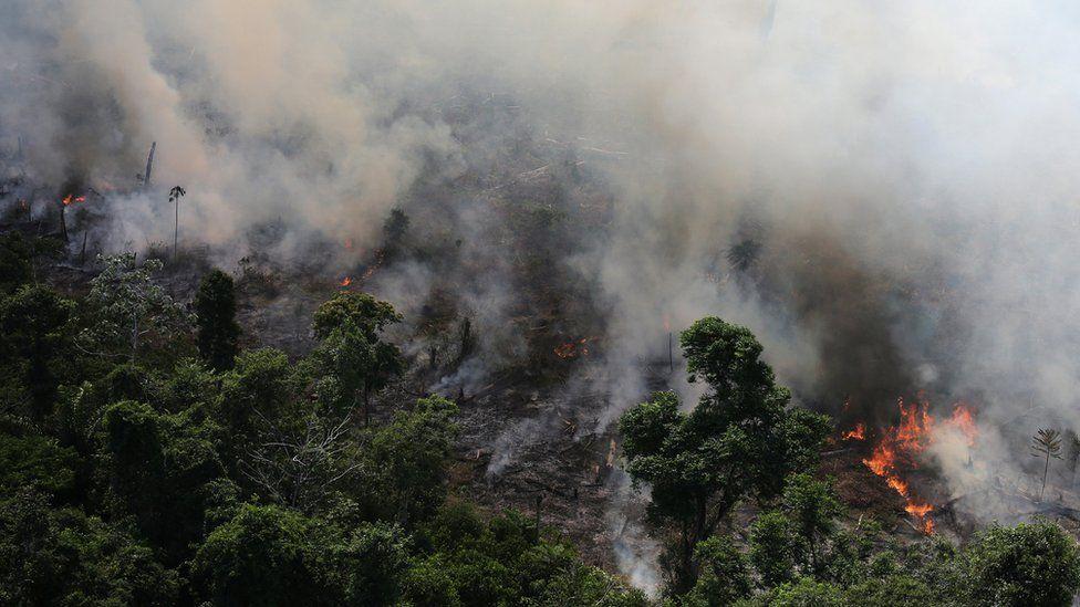 De #BoycottBrazil a Amazônia no G-7: reação internacional à política ambiental de Bolsonaro