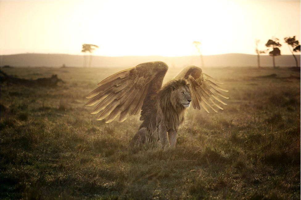 An abstract image of a lion with large bird's wings