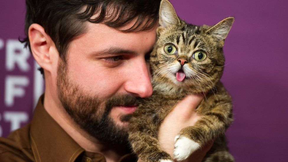"""Bubs owner Mike Bridavsky (L) and celebrity internet cat Lil Bub attends the screening of """"Lil Bub & Friendz"""""""