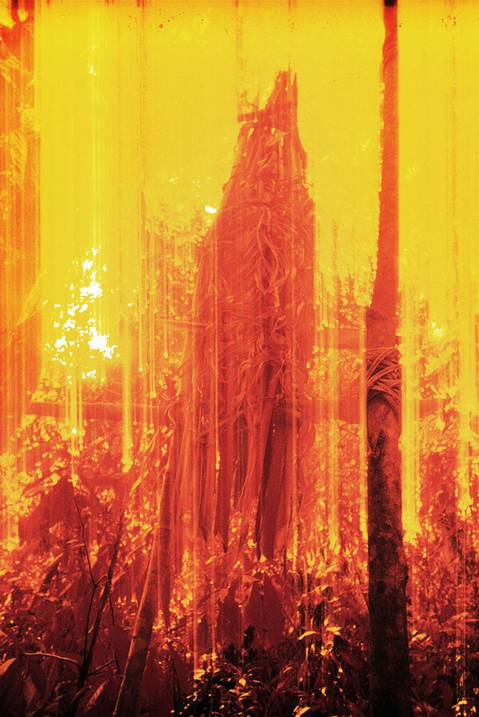 Погребна урна, снимљена инфрацрвеним филмом 1976.