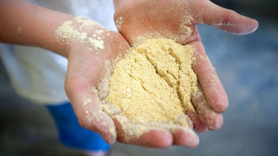 Unas manos sostienen harina de soja