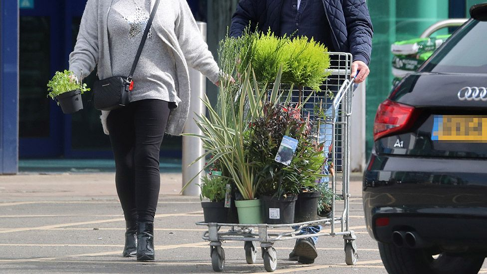 Shoppers with a trolley of plants