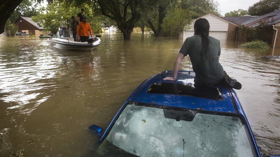 Being rescues from the Bear Creek neighbourhood