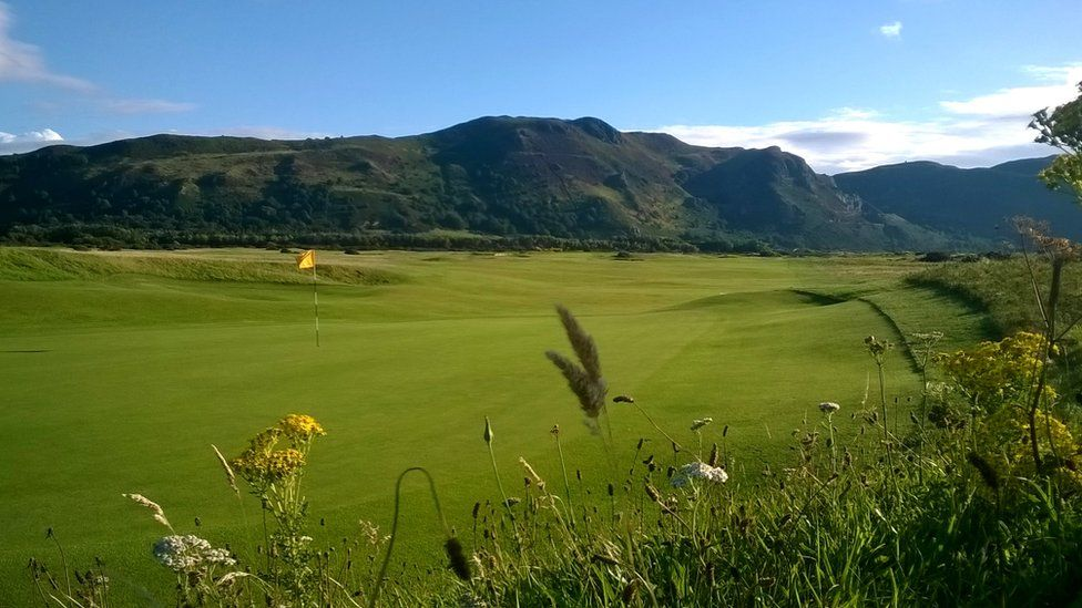 In the rough: Shaun Burkey took this shot at Conwy Golf Club