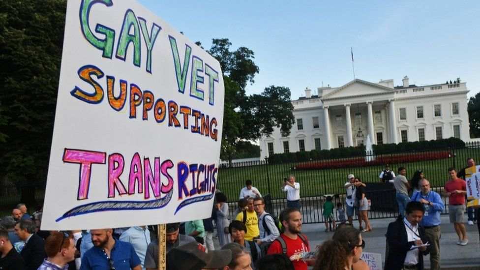 "A sign is pictured with picketers outside the White House on Saturday ""gay vet supporting trans rights"""
