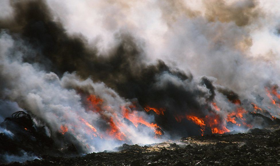 Pyre of carcasses