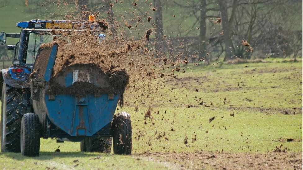 A tractor muck-spreading
