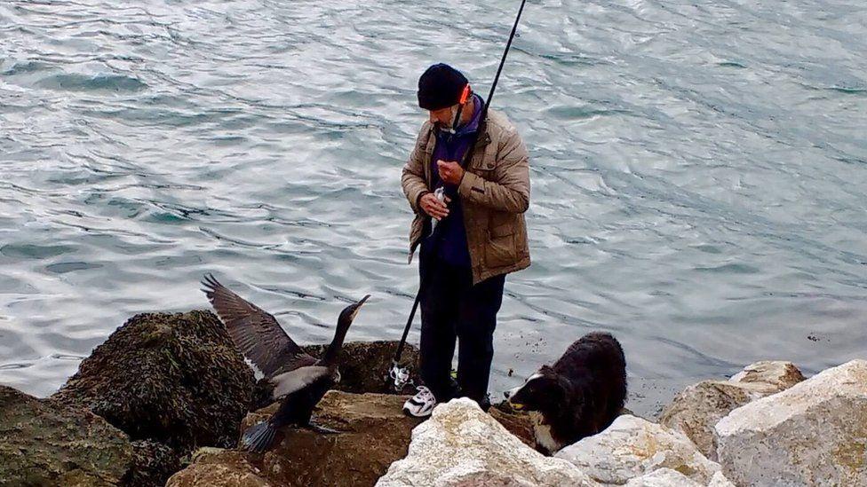 Bill Naran with cormorant and dog