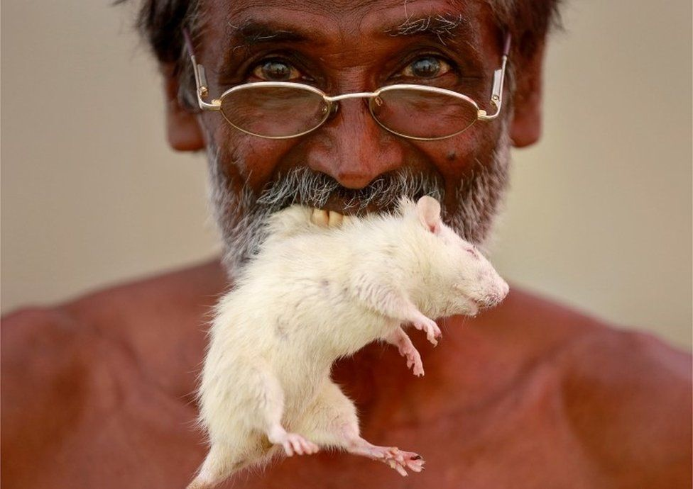 A farmer from the southern state of Tamil Nadu poses as he bites a mouse during a protest demanding a drought-relief package from the federal government, in New Delhi, India, March 27, 2017