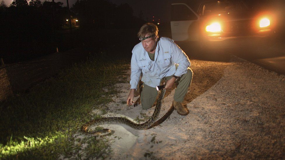 A man holds a python wrapped around his arm
