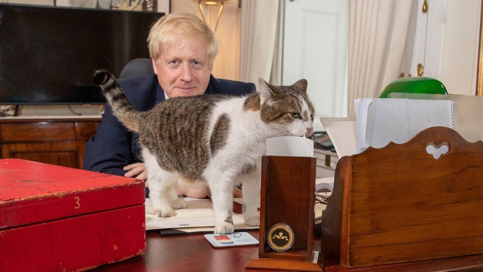 Larry the cat is known as the chief mouser and lives at No 10, but is unlikely to see much of the dog