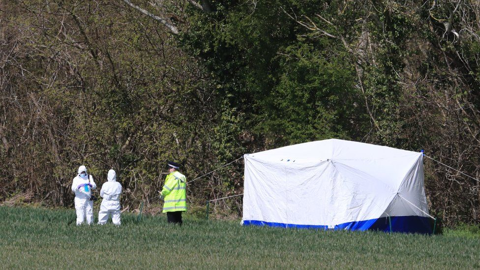 Police erected a white tent on the edge of a field at Akholt Wood
