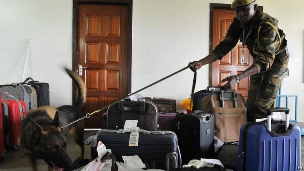 Dog trained to sniff luggage to find rhino horn and elephant ivory at the airport in Nairobi, Kenya 12/02/2016