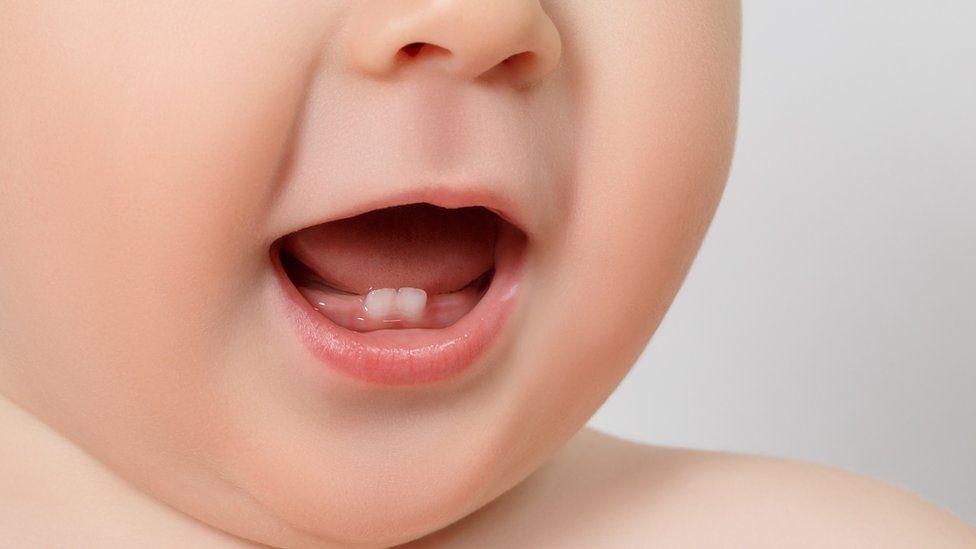 Como nossos dentes podem ajudar a ciência