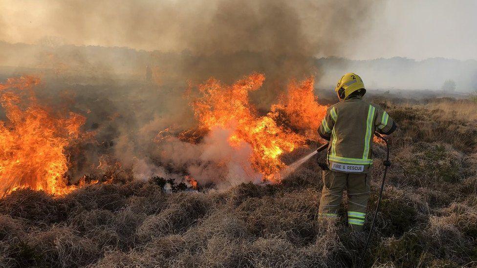 Burton Fire