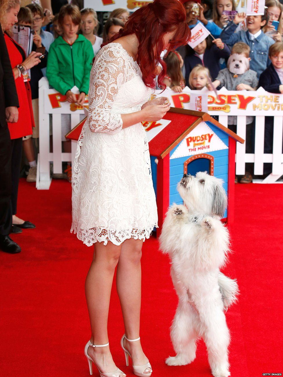 Pudsey standing on his back legs at the premier of Pudsey the dog: The Movie
